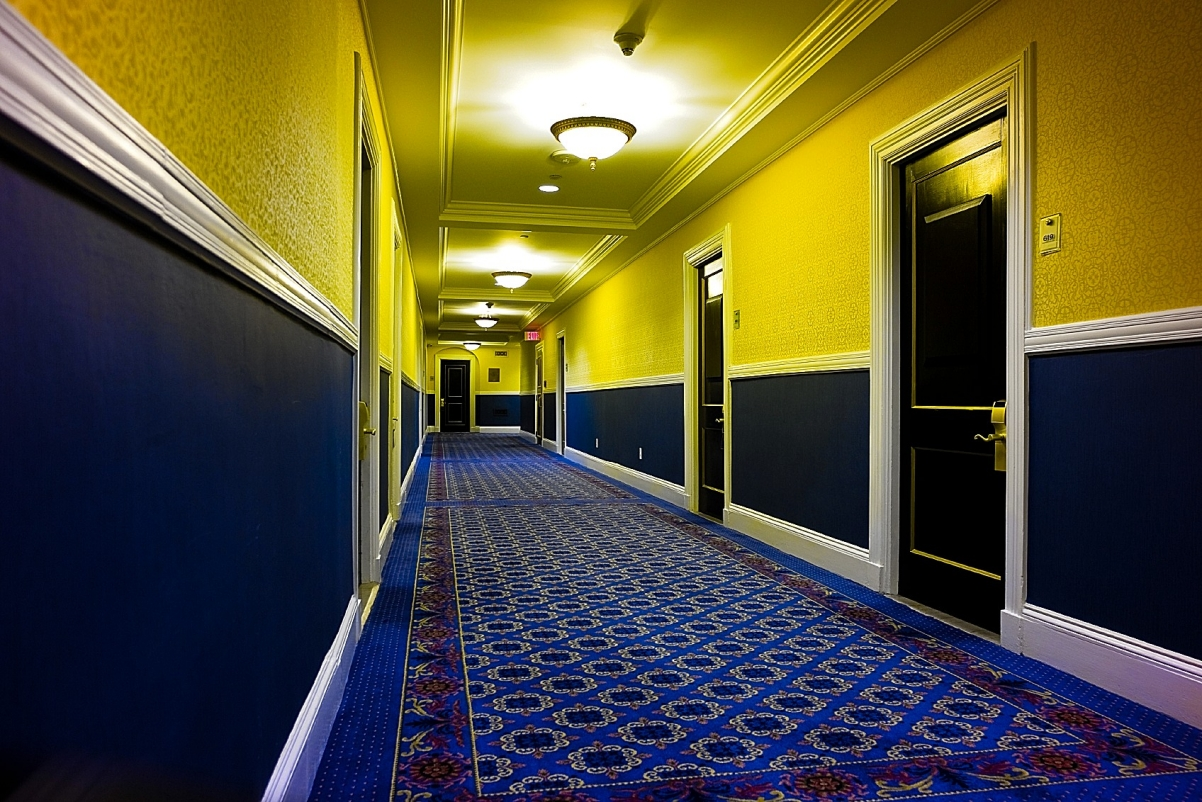 We are from marysville wa blue paws carpet cleaning for Marriott hotel home decor