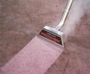 Carpet%20Cleaning%20Prochem%20Wand_full